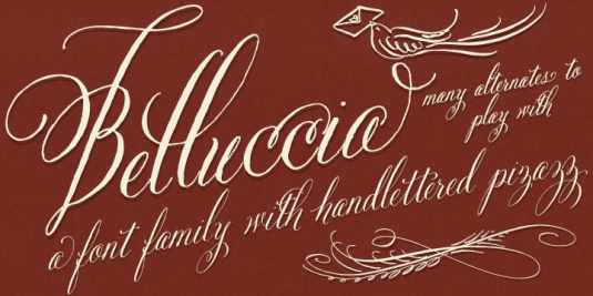 Bellucia font, calligraphy font, cursive font, script font, fancy font, fancy letters, fonts for invitaitons, fonts for weddings, wedding font, top selling fonts. best selling fonts, most popular fonts,