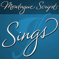 Montague Script font, script font, calligraphy font, cursive font, fancy font, wedding font, hand lettered font, font for invitations, fonts by Stephen Rapp