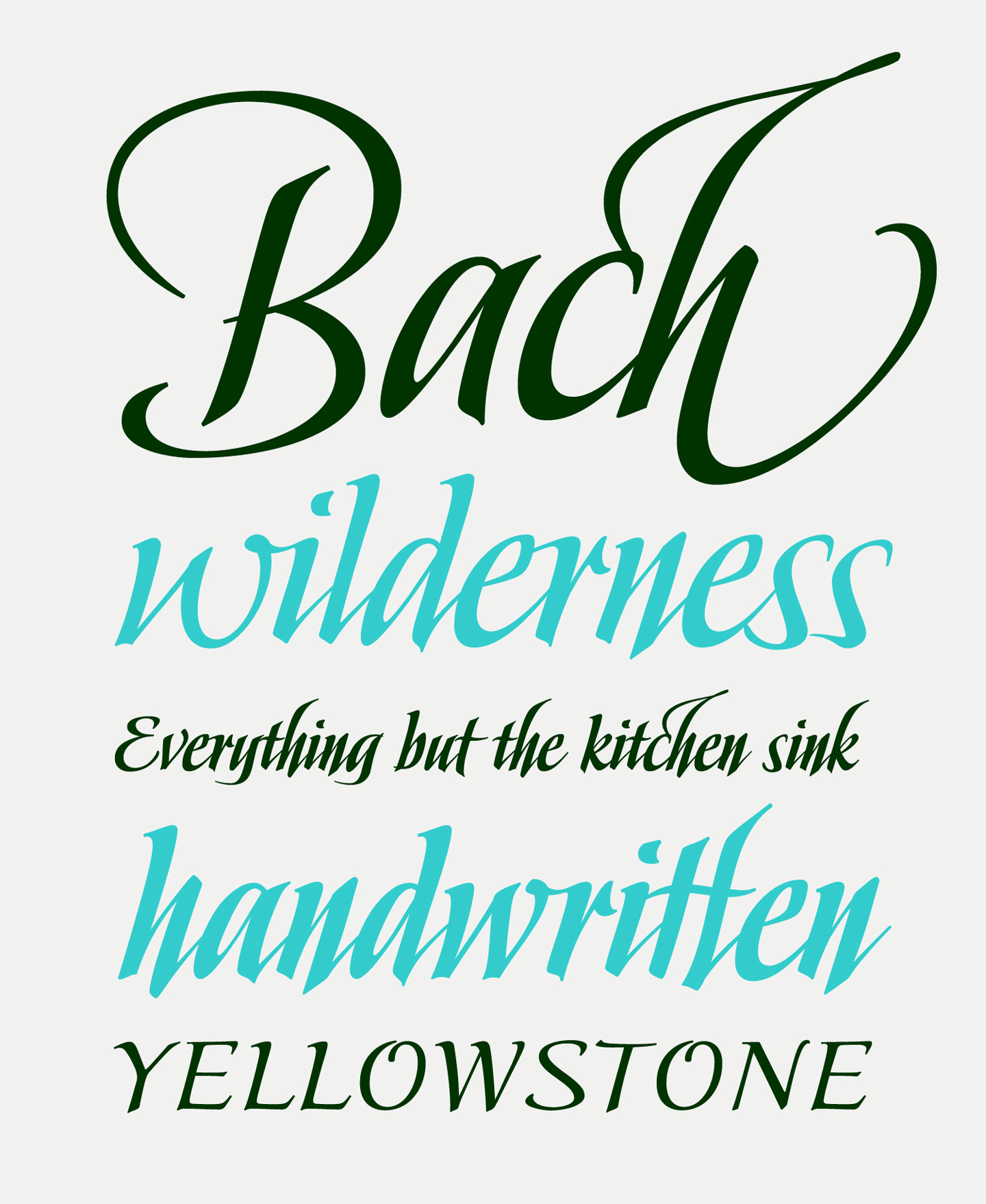 Beautiful Calligraphy Fonts by Stephen Rapp | Debi Sementelli