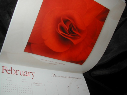 2013 Calendars, Edible flowers calendars, Belluccia font, calligraphy font, cursive font, fancy font, script font, fancy letters, top selling fonts, best selling fonts, most popular fonts, flower calendars, 2013 calendars with flowers